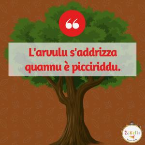 proverbio siciliano 16