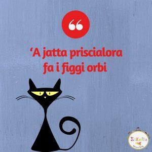proverbio siciliano 24