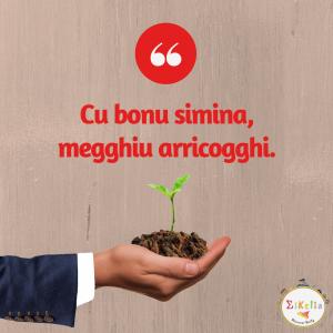 proverbio siciliano 8